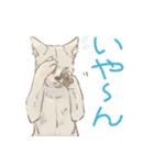 6犬種の日本犬スタンプ(個別スタンプ:14)