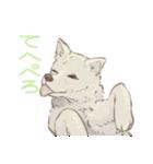 6犬種の日本犬スタンプ(個別スタンプ:17)
