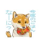 6犬種の日本犬スタンプ(個別スタンプ:23)