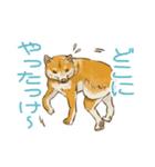 6犬種の日本犬スタンプ(個別スタンプ:24)