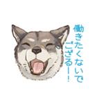 6犬種の日本犬スタンプ(個別スタンプ:25)