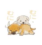 6犬種の日本犬スタンプ(個別スタンプ:40)