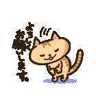 茶猫エム(個別スタンプ:7)