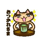 茶猫エム(個別スタンプ:15)