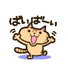 茶猫エム(個別スタンプ:19)