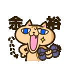 茶猫エム(個別スタンプ:22)