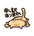 茶猫エム(個別スタンプ:24)