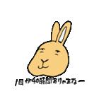 兎君(個別スタンプ:1)