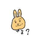 兎君(個別スタンプ:3)