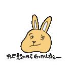 兎君(個別スタンプ:7)