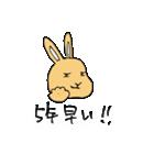 兎君(個別スタンプ:9)