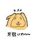 兎君(個別スタンプ:32)