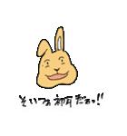兎君(個別スタンプ:34)