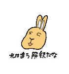 兎君(個別スタンプ:38)