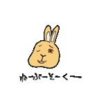 兎君(個別スタンプ:40)