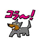 迷犬ワンダスチン2『愉快な仲間編』(個別スタンプ:11)