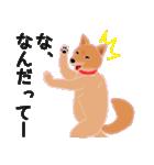 柴田さんと近所の犬。(個別スタンプ:19)