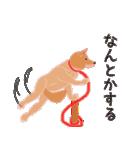 柴田さんと近所の犬。(個別スタンプ:20)