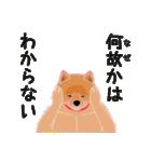 柴田さんと近所の犬。(個別スタンプ:27)