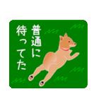 柴田さんと近所の犬。(個別スタンプ:35)