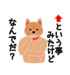 柴田さんと近所の犬。(個別スタンプ:38)