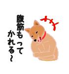 柴田さんと近所の犬。(個別スタンプ:40)