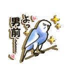 インコちゃん日常パック(個別スタンプ:13)