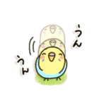 インコちゃん日常パック(個別スタンプ:22)