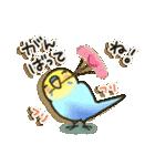 インコちゃん日常パック(個別スタンプ:23)