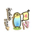 インコちゃん日常パック(個別スタンプ:30)