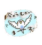 インコちゃん日常パック(個別スタンプ:31)