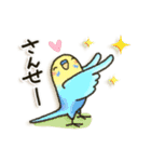 インコちゃん日常パック(個別スタンプ:35)
