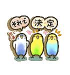インコちゃん日常パック(個別スタンプ:36)