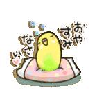 インコちゃん日常パック(個別スタンプ:38)