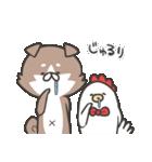 柴さんと手羽崎さん3