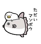 うるせぇトリ4個目(個別スタンプ:01)