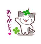 猫と四つ葉のクローバー 3(個別スタンプ:01)