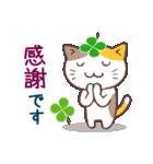 猫と四つ葉のクローバー 3(個別スタンプ:04)