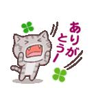 猫と四つ葉のクローバー 3(個別スタンプ:07)