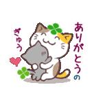 猫と四つ葉のクローバー 3(個別スタンプ:11)
