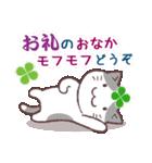猫と四つ葉のクローバー 3(個別スタンプ:13)