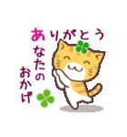 猫と四つ葉のクローバー 3(個別スタンプ:16)