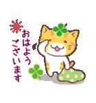 猫と四つ葉のクローバー 3(個別スタンプ:20)