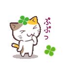 猫と四つ葉のクローバー 3(個別スタンプ:24)