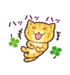 猫と四つ葉のクローバー 3(個別スタンプ:25)