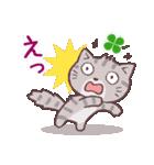 猫と四つ葉のクローバー 3(個別スタンプ:27)