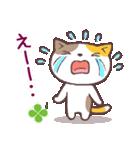 猫と四つ葉のクローバー 3(個別スタンプ:28)