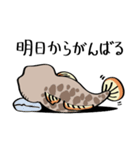 ちびヨシノボリさん(個別スタンプ:24)