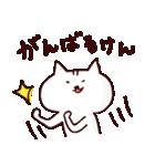 博多ん猫 vol.1(個別スタンプ:17)