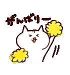 博多ん猫 vol.1(個別スタンプ:18)